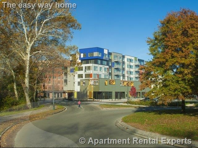 1 Bedroom, Cambridge Highlands Rental in Boston, MA for $2,850 - Photo 1