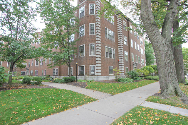 3 Bedrooms, Oak Park Rental in Chicago, IL for $2,400 - Photo 2