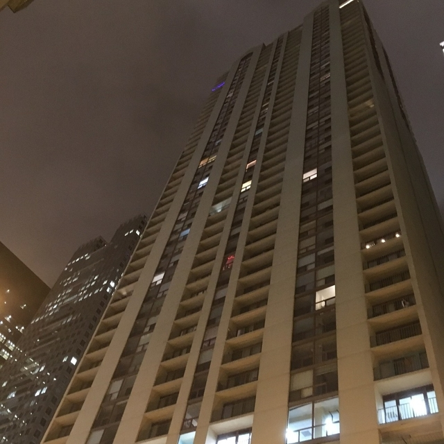 1 Bedroom, The Loop Rental in Chicago, IL for $1,775 - Photo 1