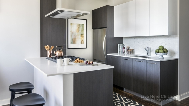 2 Bedrooms, The Loop Rental in Chicago, IL for $4,378 - Photo 1
