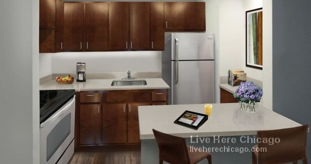 1 Bedroom, Gold Coast Rental in Chicago, IL for $3,142 - Photo 1