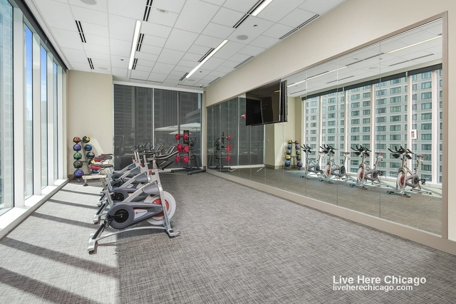 1 Bedroom, Streeterville Rental in Chicago, IL for $2,844 - Photo 2