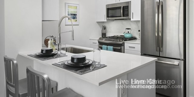 1 Bedroom, Old Town Rental in Chicago, IL for $2,686 - Photo 2