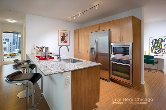 2 Bedrooms, Streeterville Rental in Chicago, IL for $3,165 - Photo 2