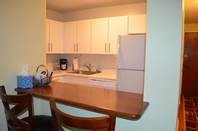 Studio, Streeterville Rental in Chicago, IL for $1,595 - Photo 2