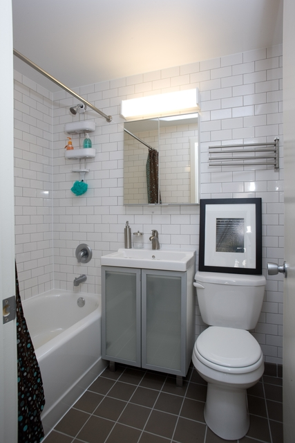 1 Bedroom, East Hyde Park Rental in Chicago, IL for $1,377 - Photo 1