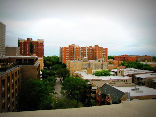2 Bedrooms, Margate Park Rental in Chicago, IL for $1,989 - Photo 2