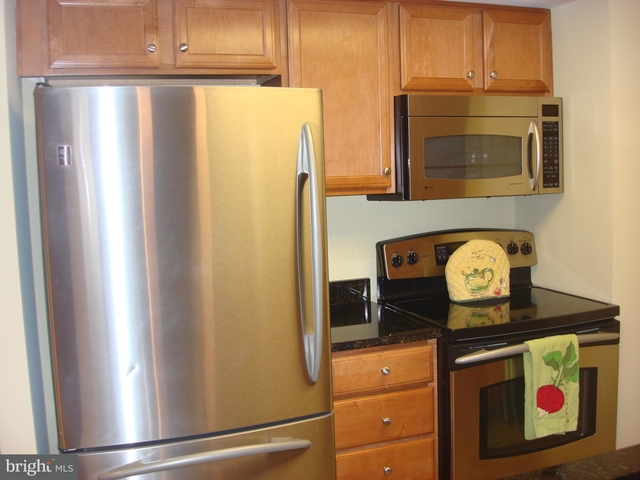 1 Bedroom, Reston Rental in Washington, DC for $1,550 - Photo 2