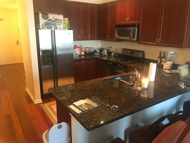 2 Bedrooms, Cabrini-Green Rental in Chicago, IL for $2,500 - Photo 1