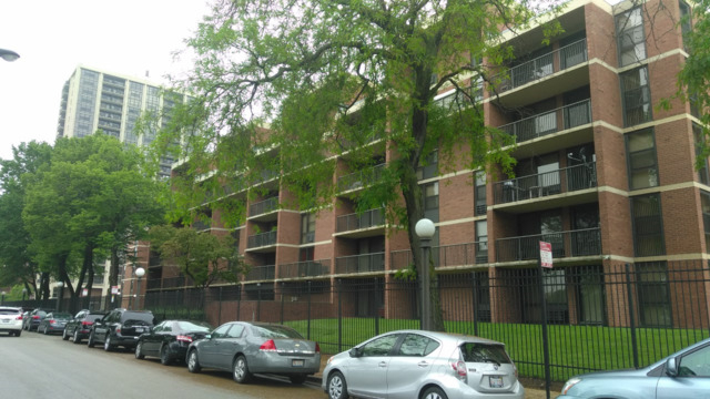 1 Bedroom, Douglas Rental in Chicago, IL for $1,150 - Photo 1