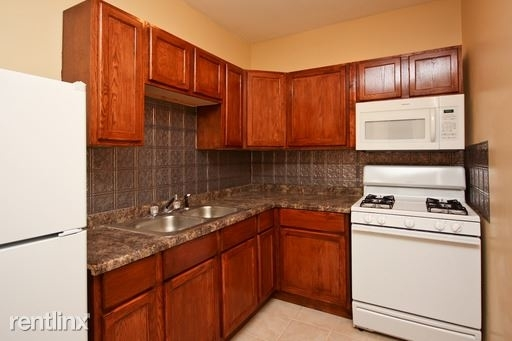 1 Bedroom, Park Manor Rental in Chicago, IL for $750 - Photo 1