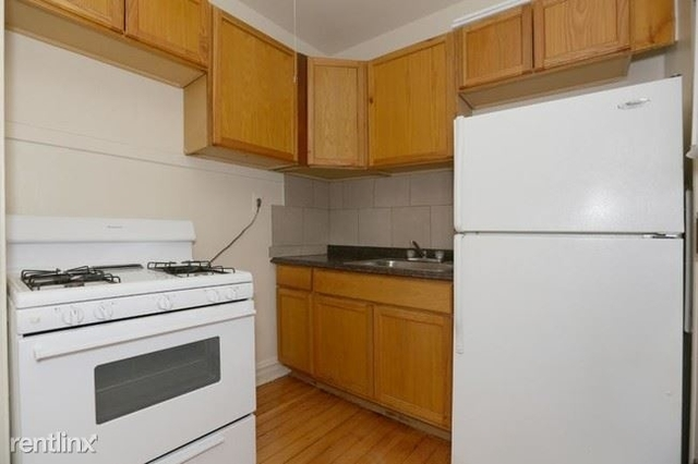 1 Bedroom, Park Manor Rental in Chicago, IL for $750 - Photo 2