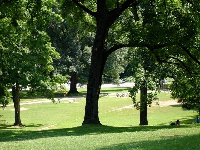 1 Bedroom, Woodley Park Rental in Washington, DC for $1,947 - Photo 1