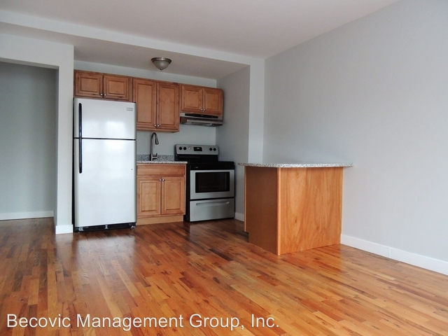 Studio, Rogers Park Rental in Chicago, IL for $925 - Photo 1