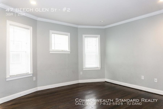 3 Bedrooms, Highland Park Rental in Boston, MA for $3,350 - Photo 2