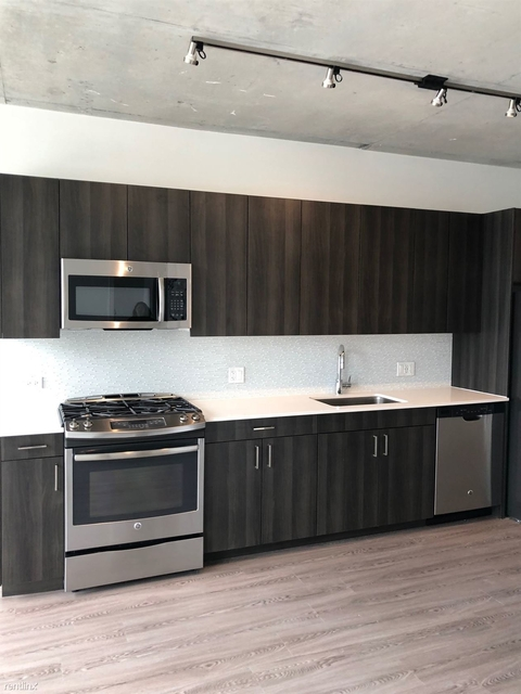 2 Bedrooms, Goose Island Rental in Chicago, IL for $2,400 - Photo 2