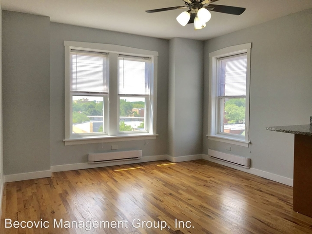 Studio, Rogers Park Rental in Chicago, IL for $915 - Photo 2