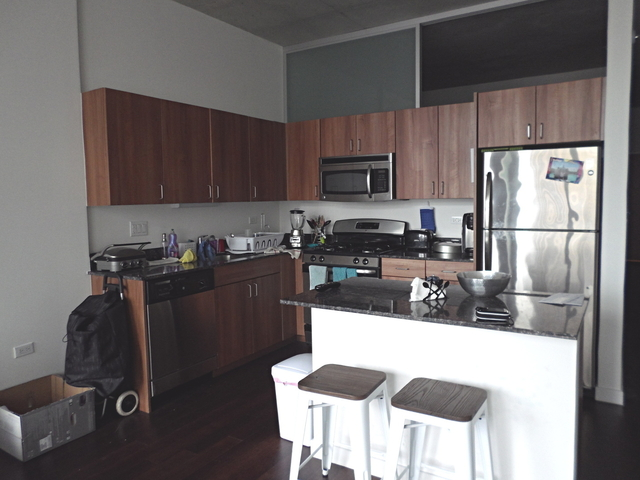 2 Bedrooms, Near West Side Rental in Chicago, IL for $2,300 - Photo 2