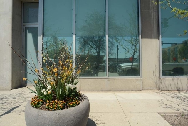 2 Bedrooms, West Loop Rental in Chicago, IL for $2,600 - Photo 2