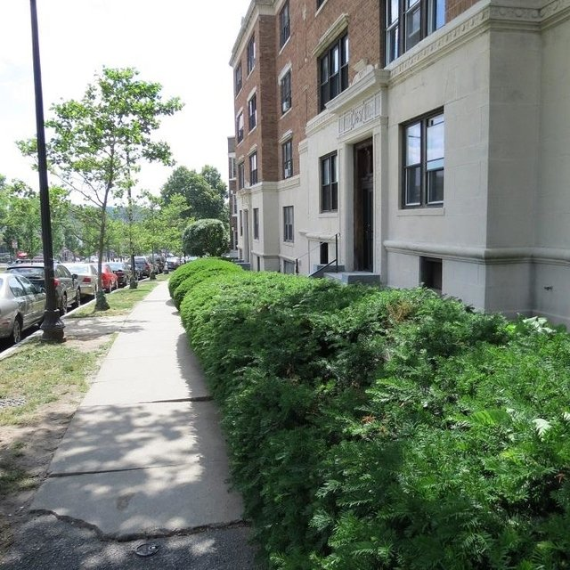 3 Bedrooms, Commonwealth Rental in Boston, MA for $2,800 - Photo 2