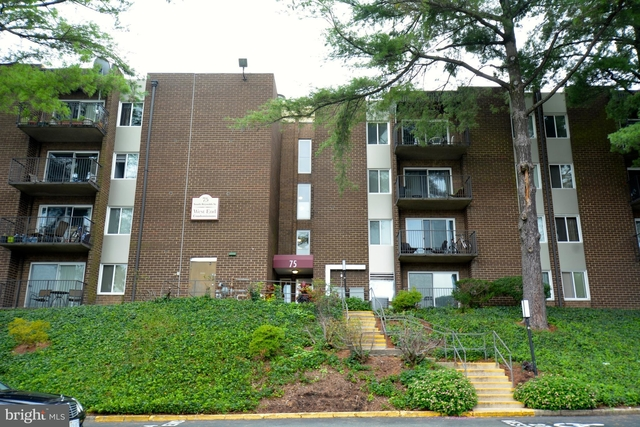 1 Bedroom, EOS Condominiums Rental in Washington, DC for $1,450 - Photo 1