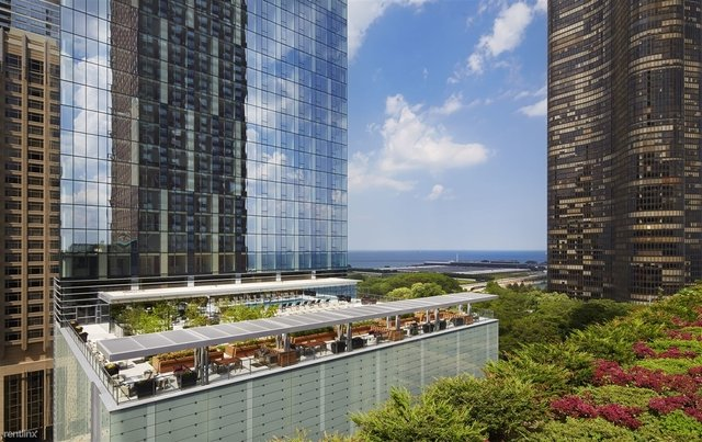 3 Bedrooms, Streeterville Rental in Chicago, IL for $14,080 - Photo 1