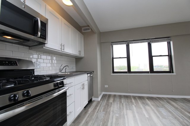 1 Bedroom, Hyde Park Rental in Chicago, IL for $1,463 - Photo 2