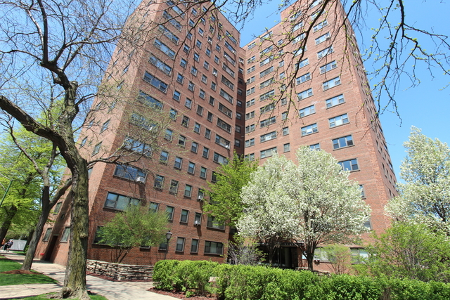 1 Bedroom, Hyde Park Rental in Chicago, IL for $1,385 - Photo 1