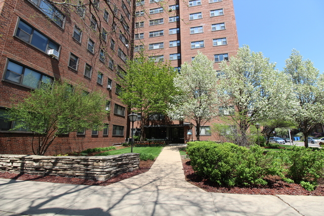 1 Bedroom, Hyde Park Rental in Chicago, IL for $1,385 - Photo 2