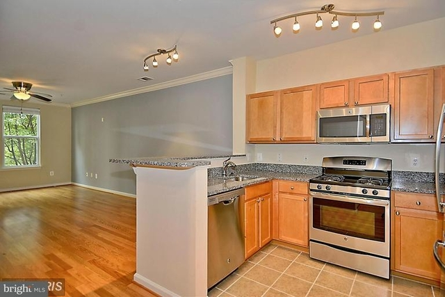 1 Bedroom, Reston Rental in Washington, DC for $1,695 - Photo 1