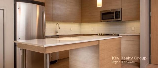1 Bedroom, Harrison Lenox Rental in Boston, MA for $3,230 - Photo 2