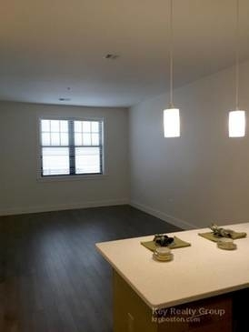 2 Bedrooms, Thompson Square - Bunker Hill Rental in Boston, MA for $3,847 - Photo 2