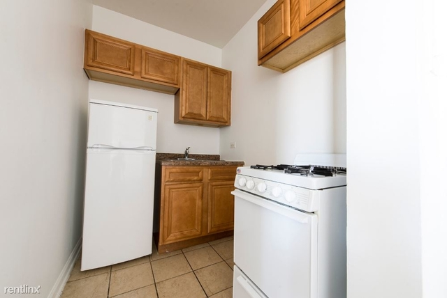 1 Bedroom, South Shore Rental in Chicago, IL for $785 - Photo 1