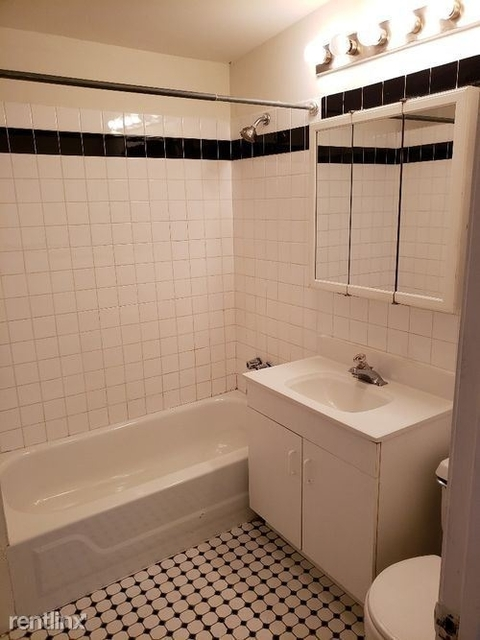 1 Bedroom, Lakeview Rental in Chicago, IL for $1,550 - Photo 2