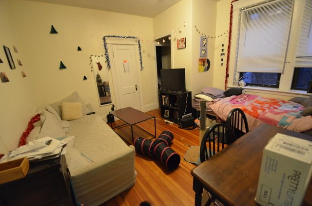 1 Bedroom, Fenway Rental in Boston, MA for $2,100 - Photo 2