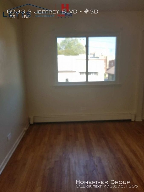 1 Bedroom, South Shore Rental in Chicago, IL for $700 - Photo 2