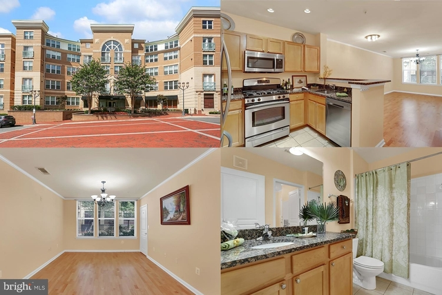 1 Bedroom, Reston Rental in Washington, DC for $1,750 - Photo 1