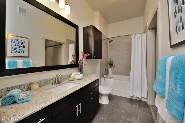 1 Bedroom, Downtown Houston Rental in Houston for $1,215 - Photo 2