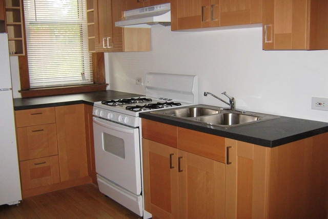 4 Bedrooms, Hyde Park Rental in Chicago, IL for $3,533 - Photo 1