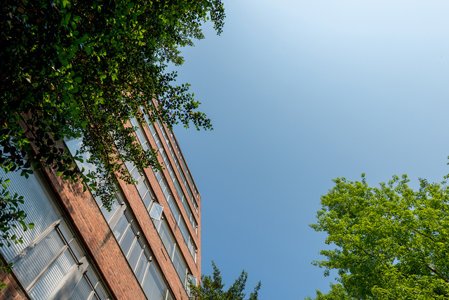 2 Bedrooms, Woodley Park Rental in Washington, DC for $2,949 - Photo 2