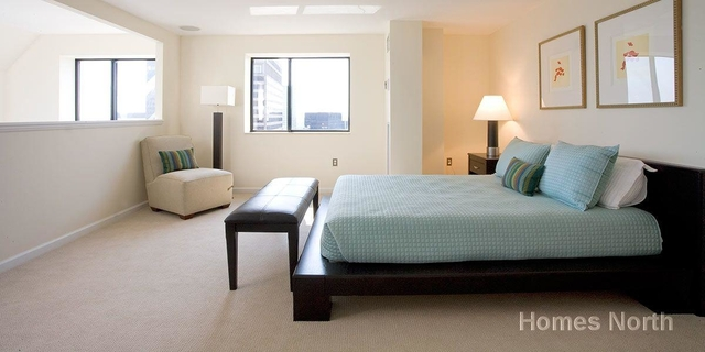 2 Bedrooms, Downtown Boston Rental in Boston, MA for $3,879 - Photo 1