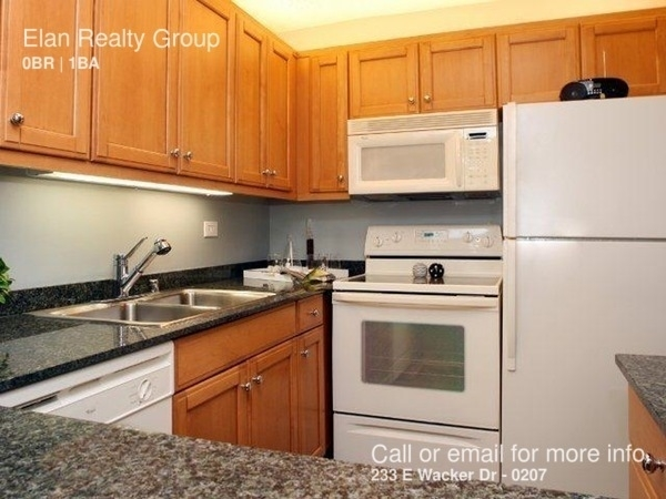 Studio, The Loop Rental in Chicago, IL for $1,525 - Photo 1
