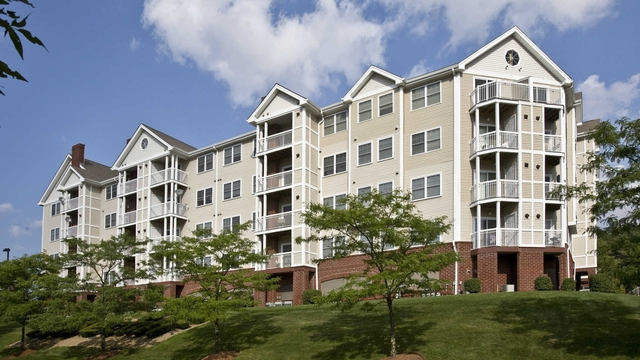 1 Bedroom, Blue Hills Reservation Rental in Boston, MA for $1,845 - Photo 1