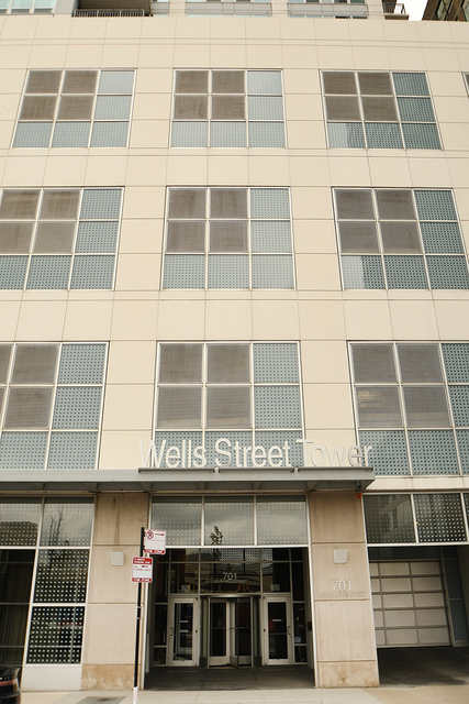 2 Bedrooms, South Loop Rental in Chicago, IL for $2,950 - Photo 1