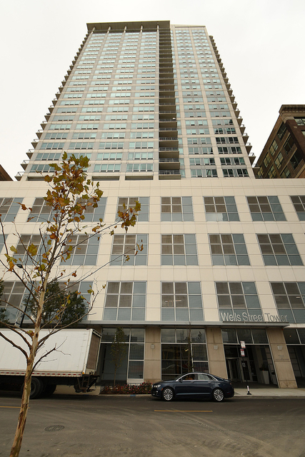 2 Bedrooms, South Loop Rental in Chicago, IL for $2,950 - Photo 2