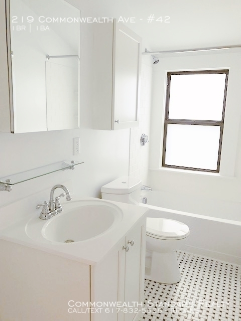 1 Bedroom, Chestnut Hill Rental in Boston, MA for $2,805 - Photo 1
