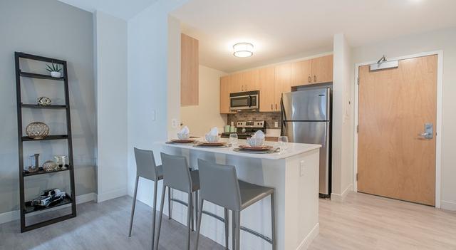 2 Bedrooms, Harrison Lenox Rental in Boston, MA for $3,645 - Photo 1