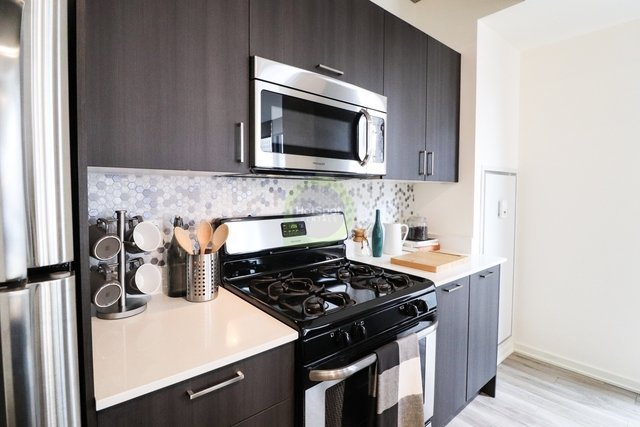2 Bedrooms, South Loop Rental in Chicago, IL for $3,539 - Photo 1