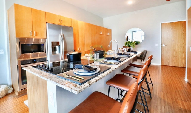 Studio, Streeterville Rental in Chicago, IL for $1,868 - Photo 1