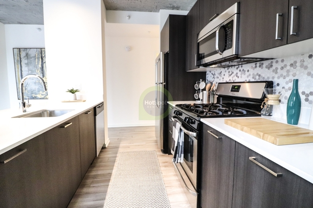 2 Bedrooms, South Loop Rental in Chicago, IL for $3,781 - Photo 1